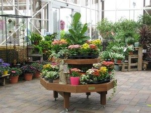 2-Tier Delhi Garden Center
